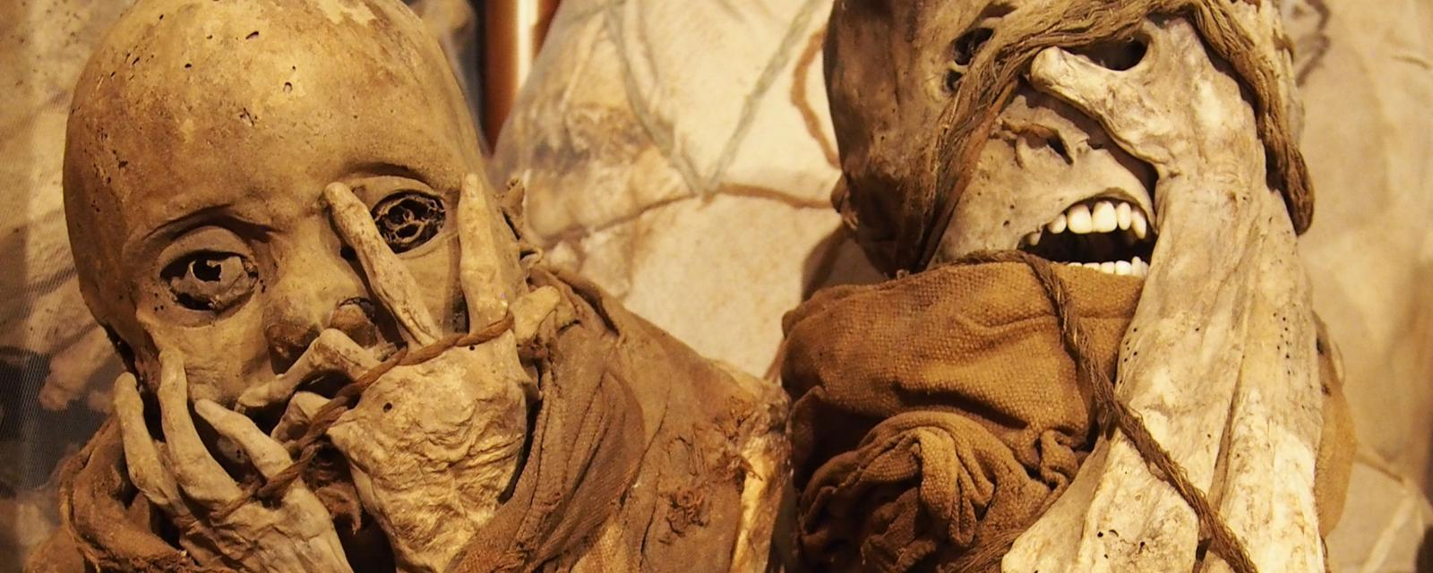The Royal Mummies Of Peru Call You To Visit Their