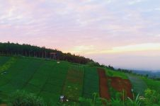 Indahnya pemandangan Bandung dari atas Bukit Moko