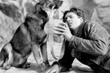 Ini alasan kenapa anjing Rin Tin Tin gagal jadi peraih Oscar pertama