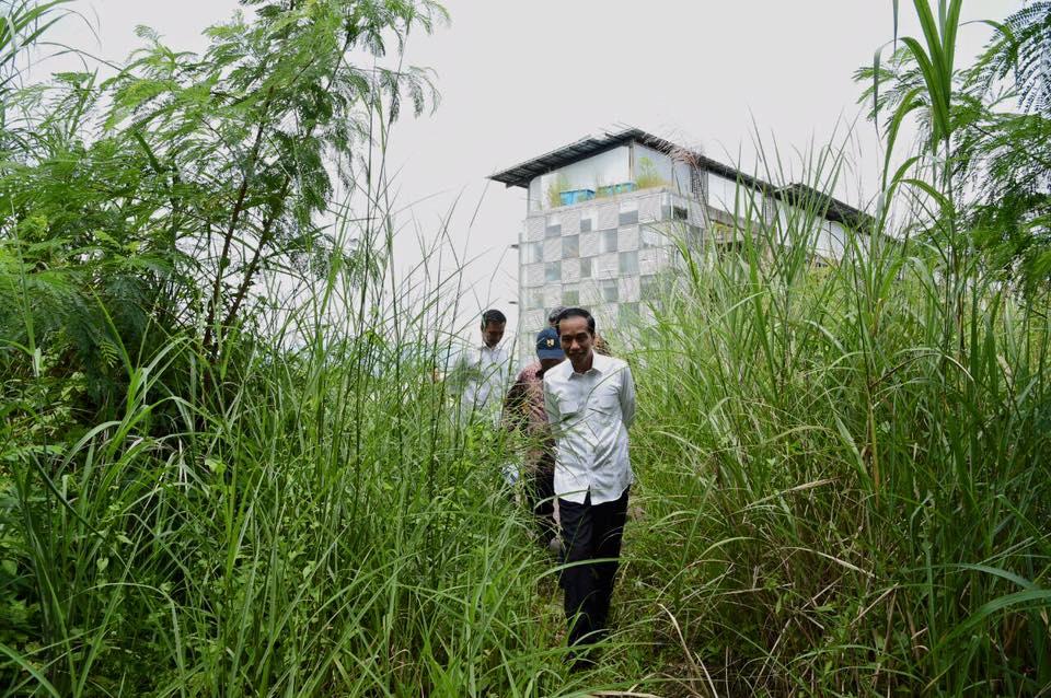 Presiden Jokowi terjang ilalang setinggi orang dewasa, ngapain ya?