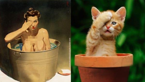 15 Kucing ini tirukan pose model jadul, hasilnya kocak banget!