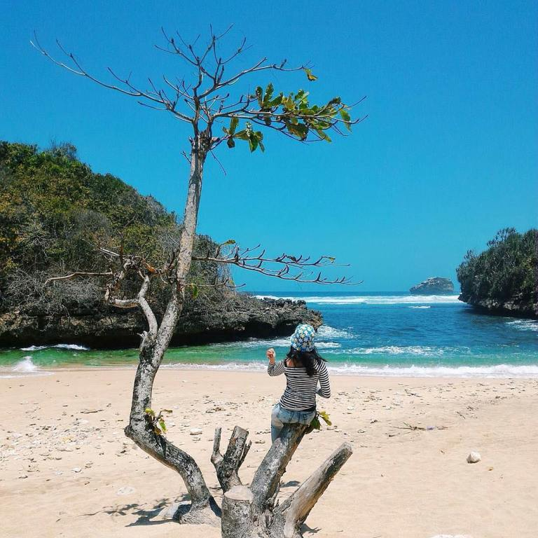 7 Tempat Wisata Di Malang Yang Lagi Hits Wajib Dikunjungi