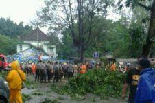 Ini identitas korban tertimpa pohon tumbang di Gembira Loka