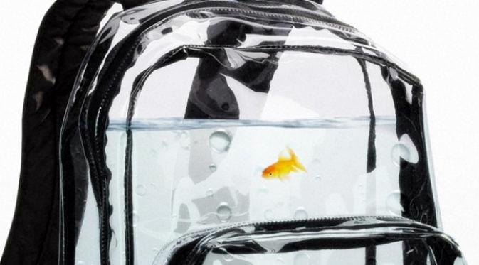 Unik, tas transparan ini bisa jadi akuarium lho....