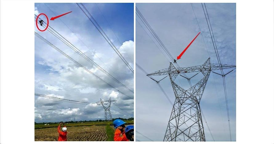 Perjuangan petugas PLN benahi jaringan listrik, bertaruh nyawa!