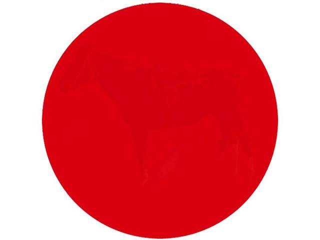 Teka Teki Lingkaran Merah Apa Yang Sebenarnya Tersembunyi Di