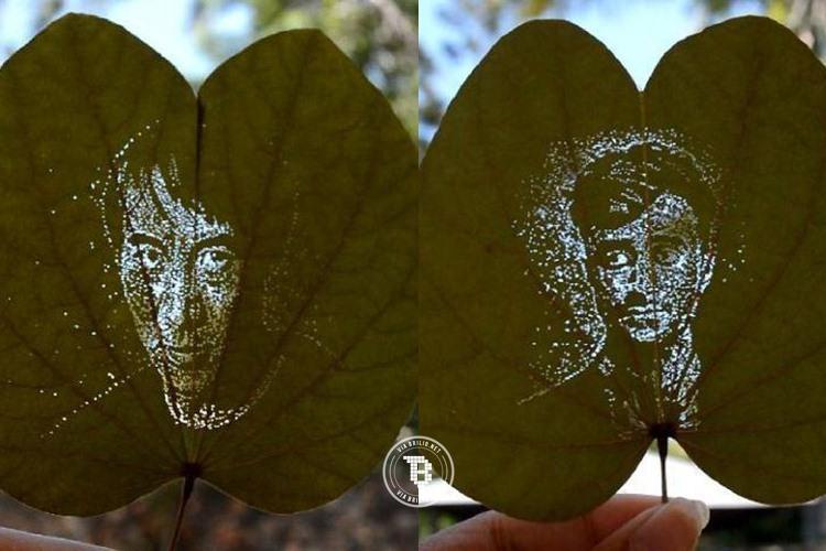 9 Lukisan wajah di atas daun yang pasti bikin kamu terkesima