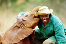 Panti asuhan ini khusus disediakan untuk anak gajah terlantar, brilio!