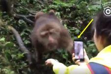 Aksi monyet rebut smartphone gadis cantik ini bikin tersenyum geli
