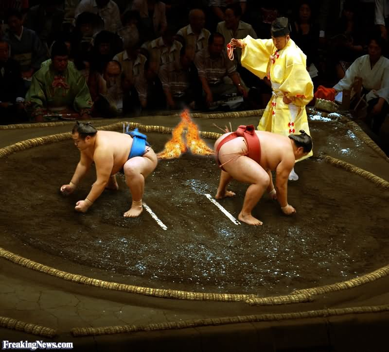 20 Foto atlet sumo kocak ini pasti bikin kamu ketawa lepas