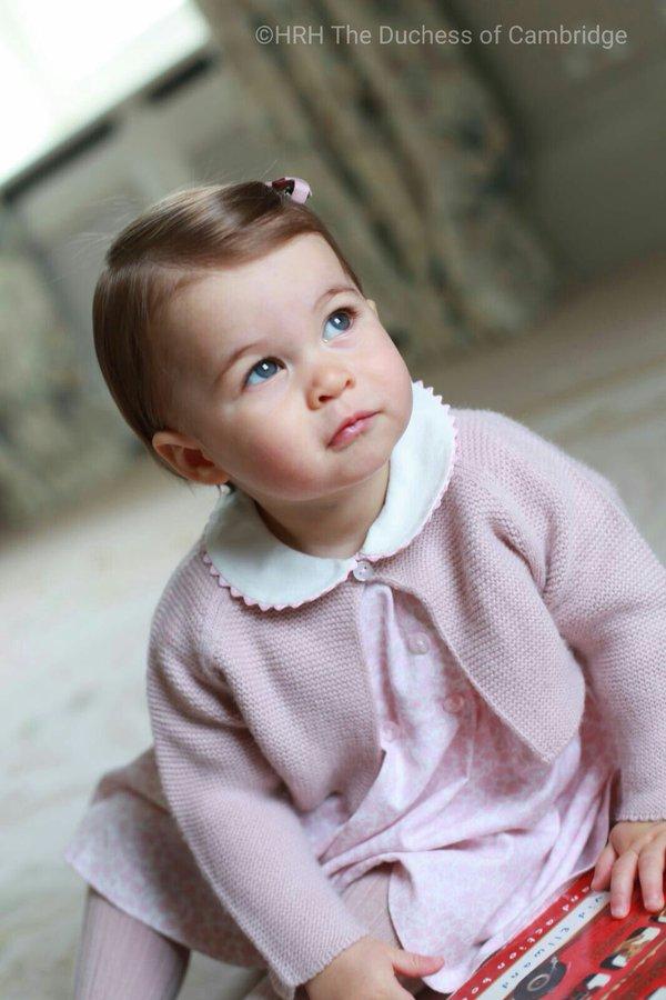 Charlotte, Putri pangeran William dan Kate Middleton yang menggemaskan. © 2016 brilio.net