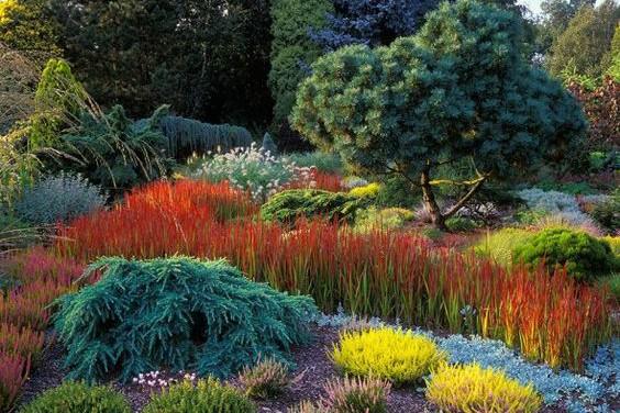 10 Kreasi rumput jepang ini bisa bikin kebunmu makin indah, coba deh!
