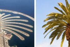10 Karya arsitektur keren ini desainnya terinspirasi dari alam, wow!