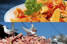 10 Makanan burung yang nggak biasa, dari selai sampai pasta lho