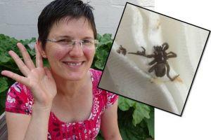 Ngeri banget, laba-laba bersarang dalam telinga polisi wanita ini