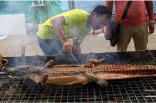 Negara ini legalkan perdagangan daging buaya, ada sate buaya juga lho!