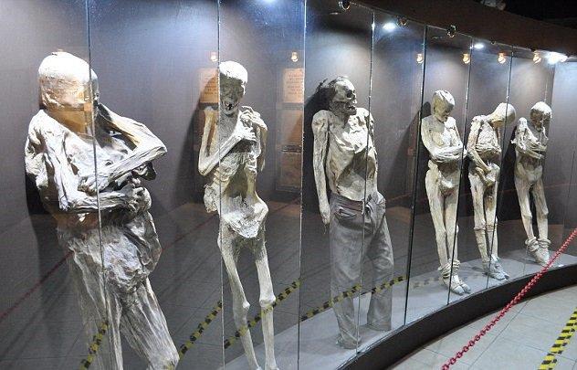 Koleksi museum ini berupa mayat, kamu berani ke sini?