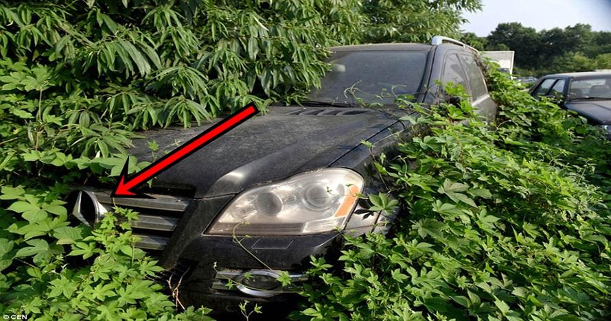 10 Foto mobil mewah terbengkalai ini bikin ngelus dada, duh!