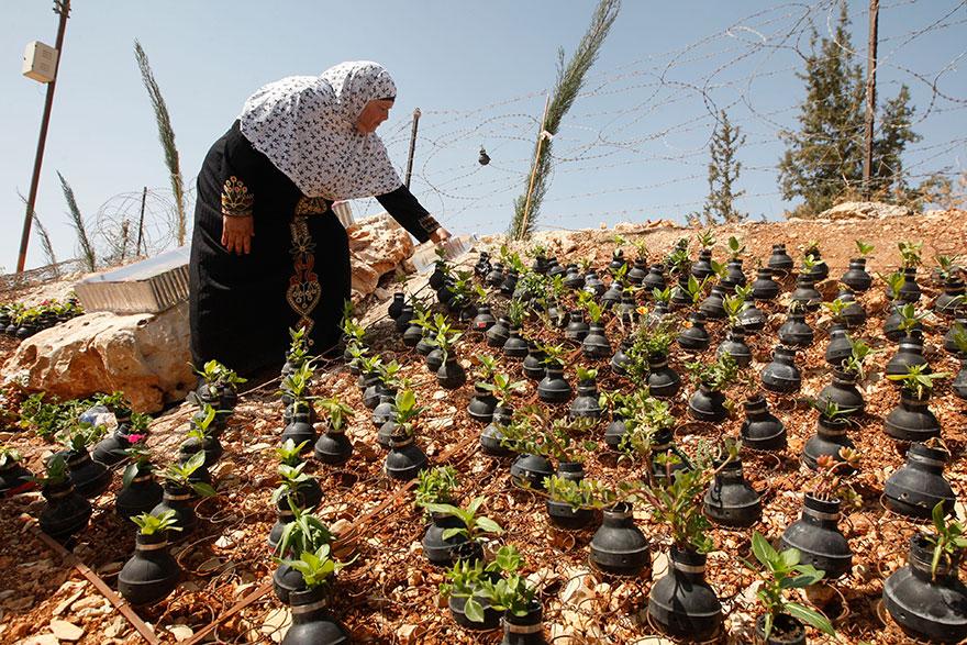 10 Foto menyentuh wanita Palestina tanam bunga di bekas bom