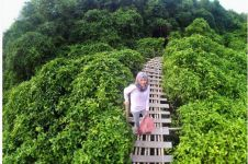 15 Foto liburan di Hutan Mangrove Kulonprogo, tempat hits baru Jogja