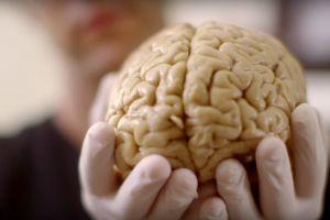 Pria ini kehilangan 90 persen otaknya tapi tetap hidup normal, ajaib!