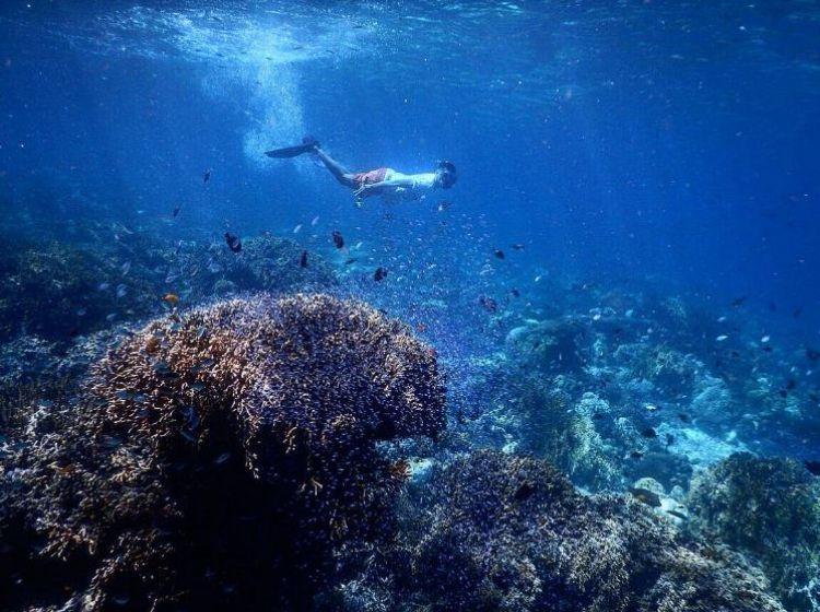 12 Potret keindahan Pulau Moyo, tempat Putri Diana hindari paparazzi!