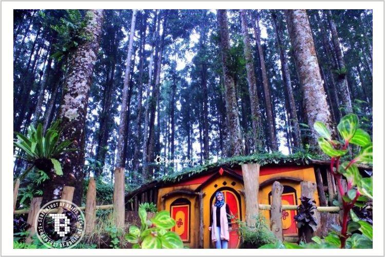 Nggak hanya di Bandung, rumah ala 'The Hobbit' juga ada di Purbalingga