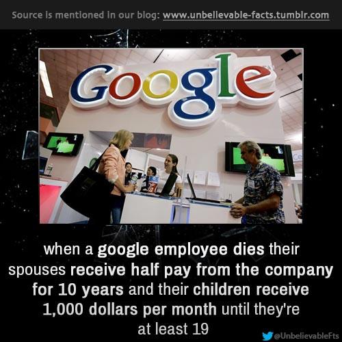 10 fasilitas di kantor google ini bikin karyawan betah