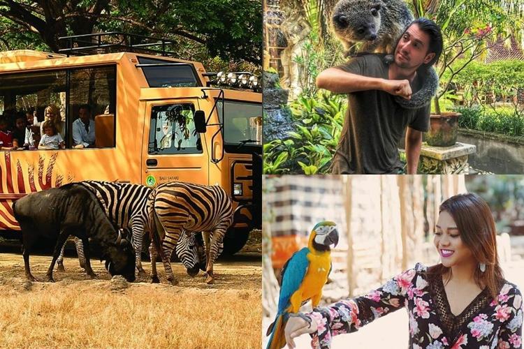 Ini 7 kebun binatang terbaik di Indonesia, kamu pernah piknik ke sana?