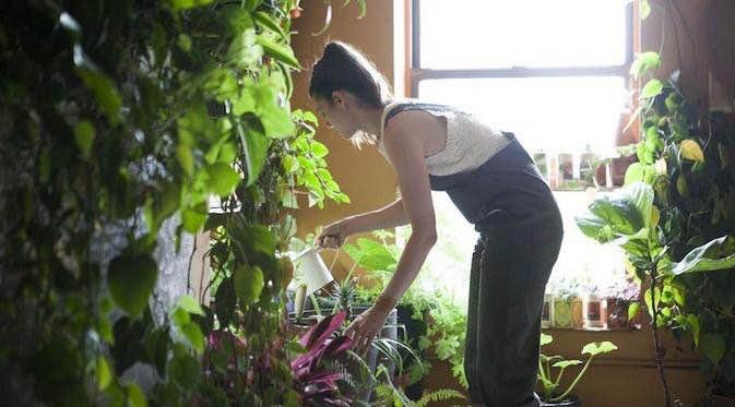Cinta lingkungan hijau, wanita ini bikin kebun di apartemennya