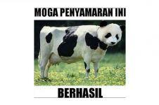 12 Meme lucu perasaan hewan sebelum dikurbankan, ngocol banget ya