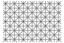 Bisakah kamu melihat 12 titik hitam di gambar ini secara bersamaan?