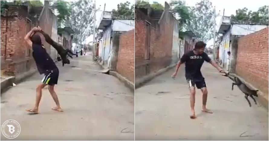 Aksi pria ini tak terpuji, perlakukan anjing dengan cara biadab
