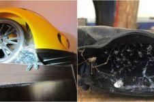 10 Foto ini bukti kalau laba-laba bisa bersembunyi di mana saja, ngeri
