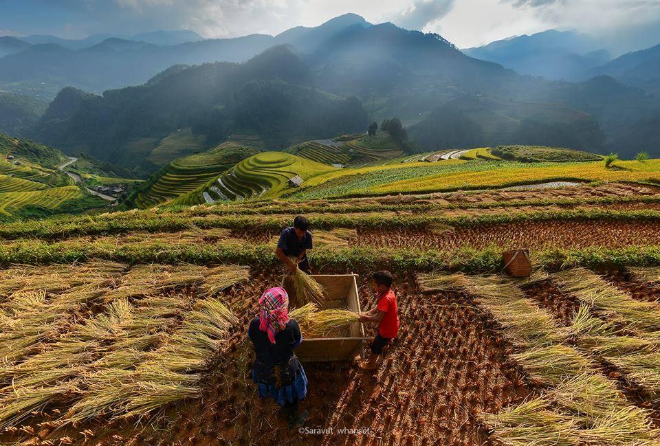 23 Foto Menakjubkan Kehidupan Di Pedesaan Bayangin Aja Udah