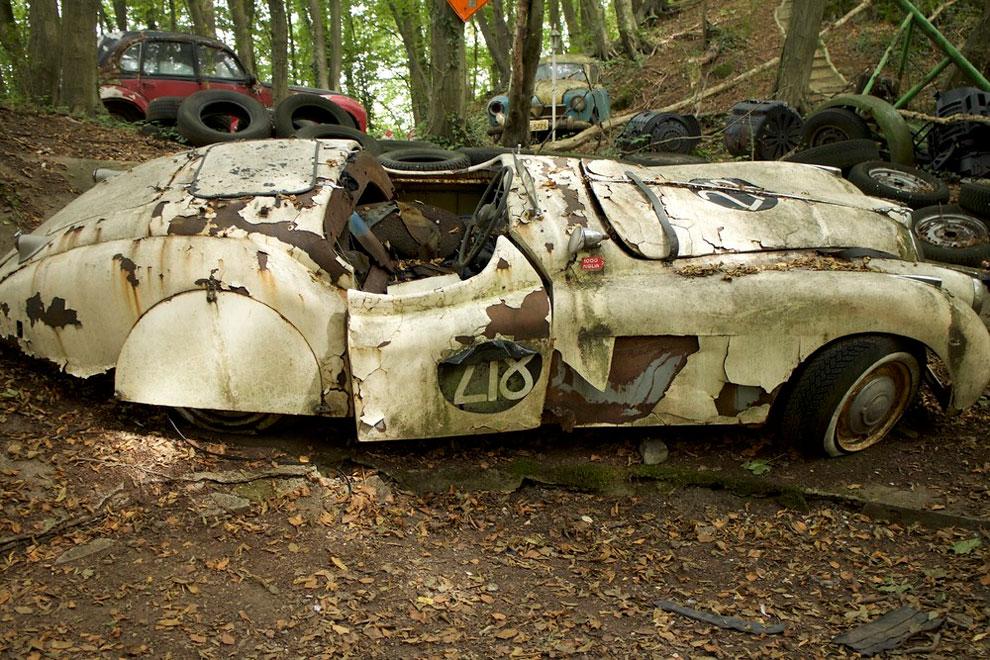 Pria ini taruh 50 mobilnya di hutan, total harganya capai Rp 13 miliar