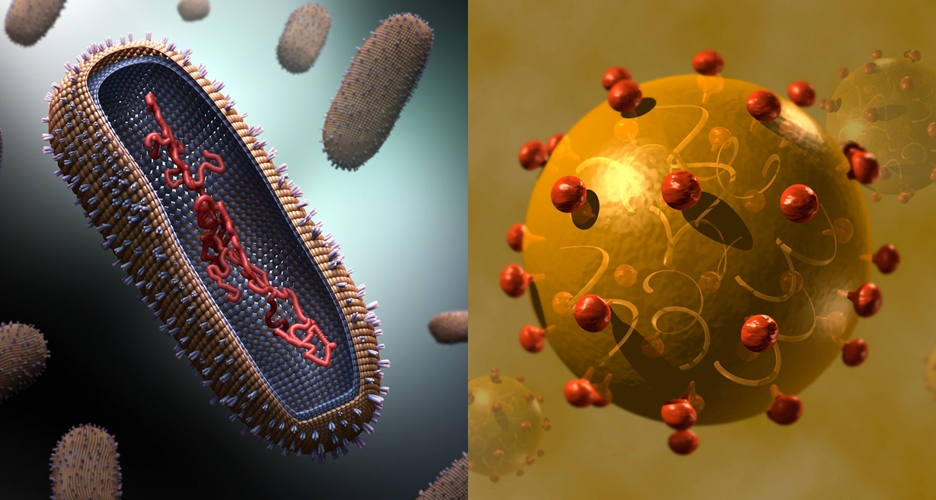 12 Foto virus ini dijamin bikin hatimu berdebar-debar
