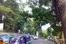 Misteri Jalan Siliwangi Bandung, kisah di balik film horor The Doll