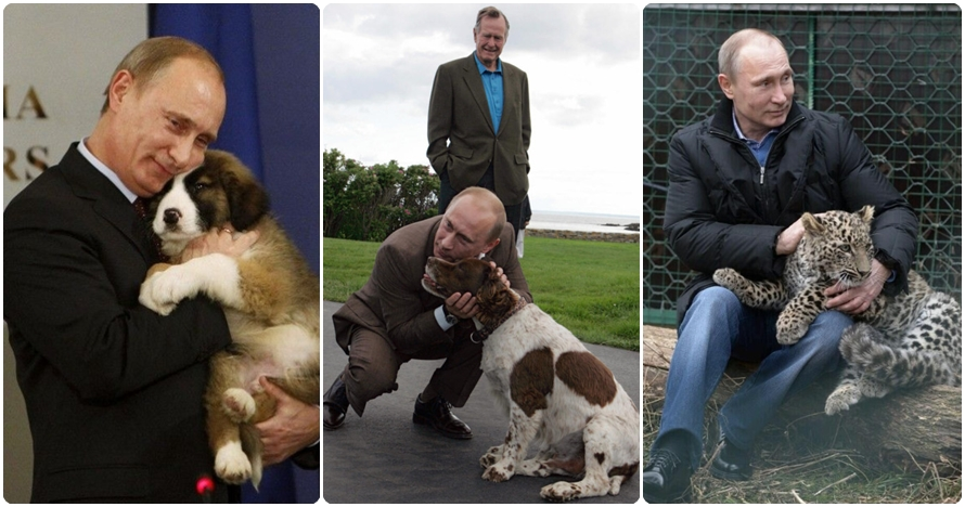 Tak cuma berwibawa, 15 foto ini bukti Vladimir Putin penyayang hewan