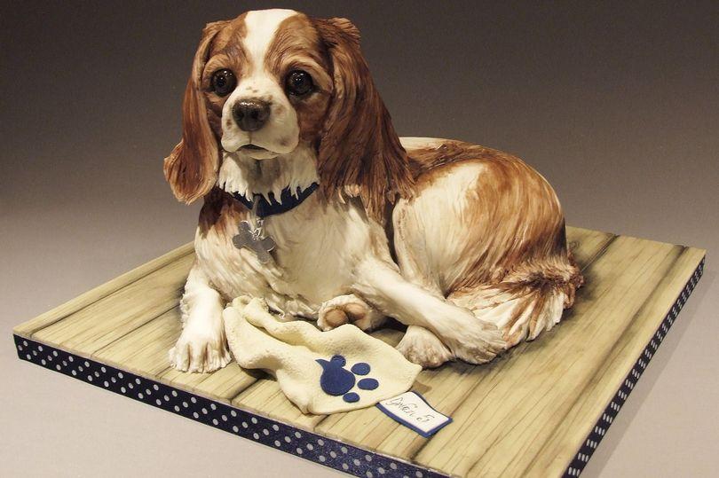kue bentuk anjing © 2016 brilio.net