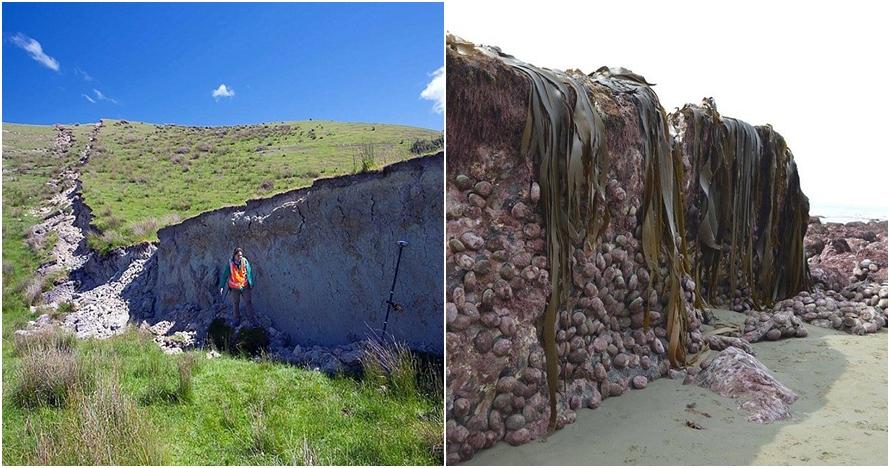 10 Foto dinding batu akibat gempa di Selandia Baru ini tak terduga
