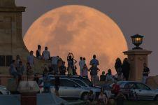 15 Momen menakjubkan ini tertangkap kamera selama 2016 di Australia
