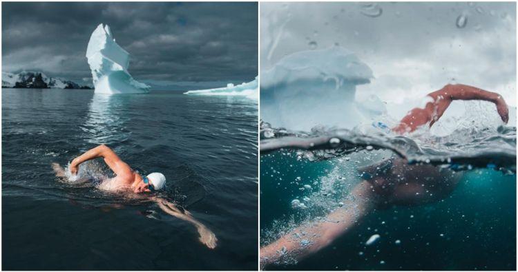 Kampanye selamatkan lingkungan, atlet ini berenang di Antartika