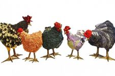 7 Karya seni berbentuk ayam ini mirip banget sama aslinya, keren!