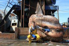 17 Hewan laut ini kayak monster, tapi beneran nyata adanya