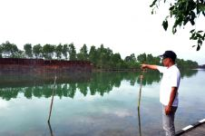 Duh, limbah batubara bikin usaha keramba ikan di Kutai gulung tikar