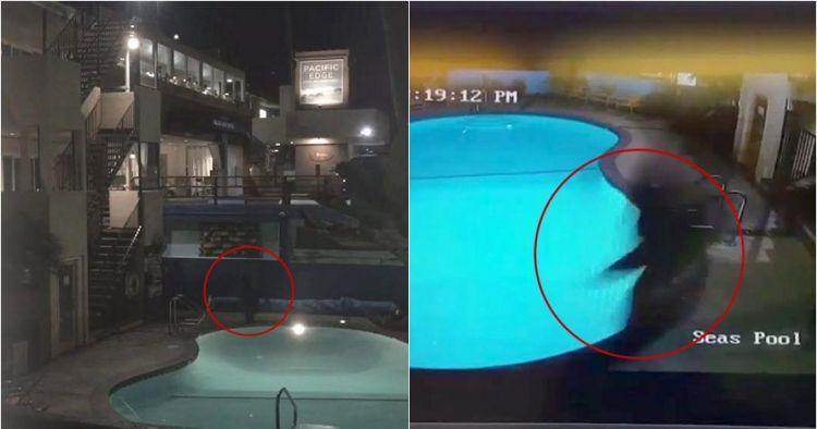Ingin pamer aksi lompat ke kolam, Youtuber ini malah apes