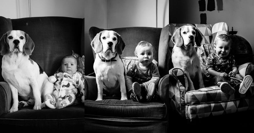 24 Potret bayi dan anjingnya berpose selama 2 tahun ini unik banget