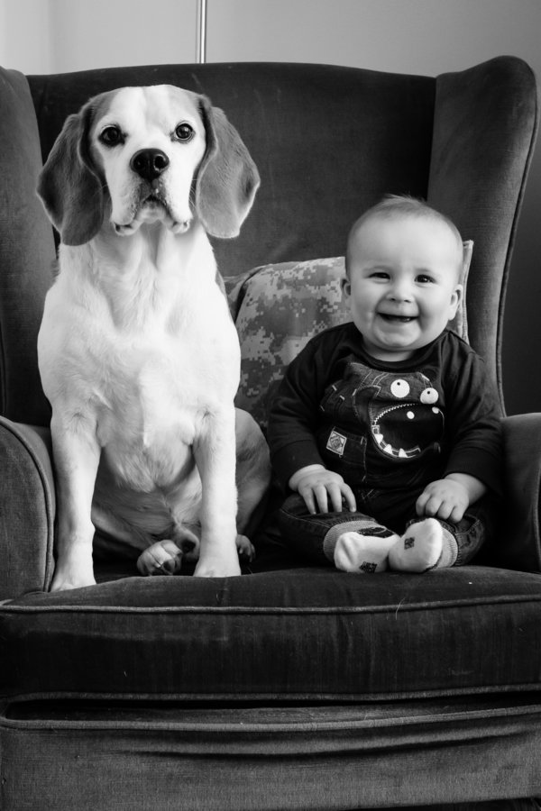 Foto Stan And Jasper 9 © 2017 brilio.net