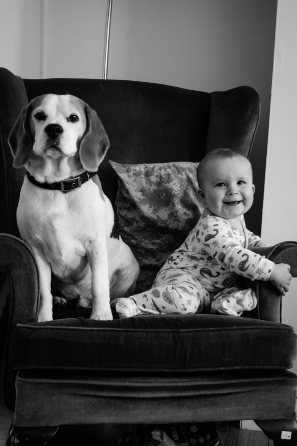 Foto Stan And Jasper 10 © 2017 brilio.net